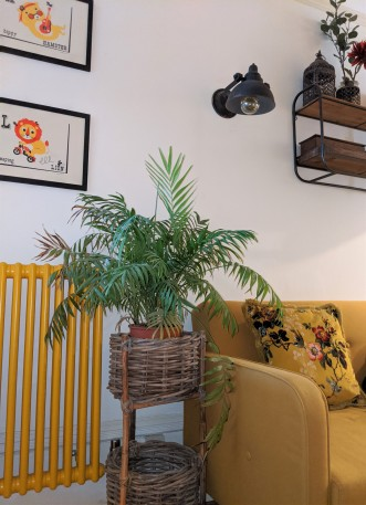 mustard hall sofa